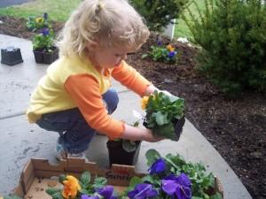 planting_flowers_3